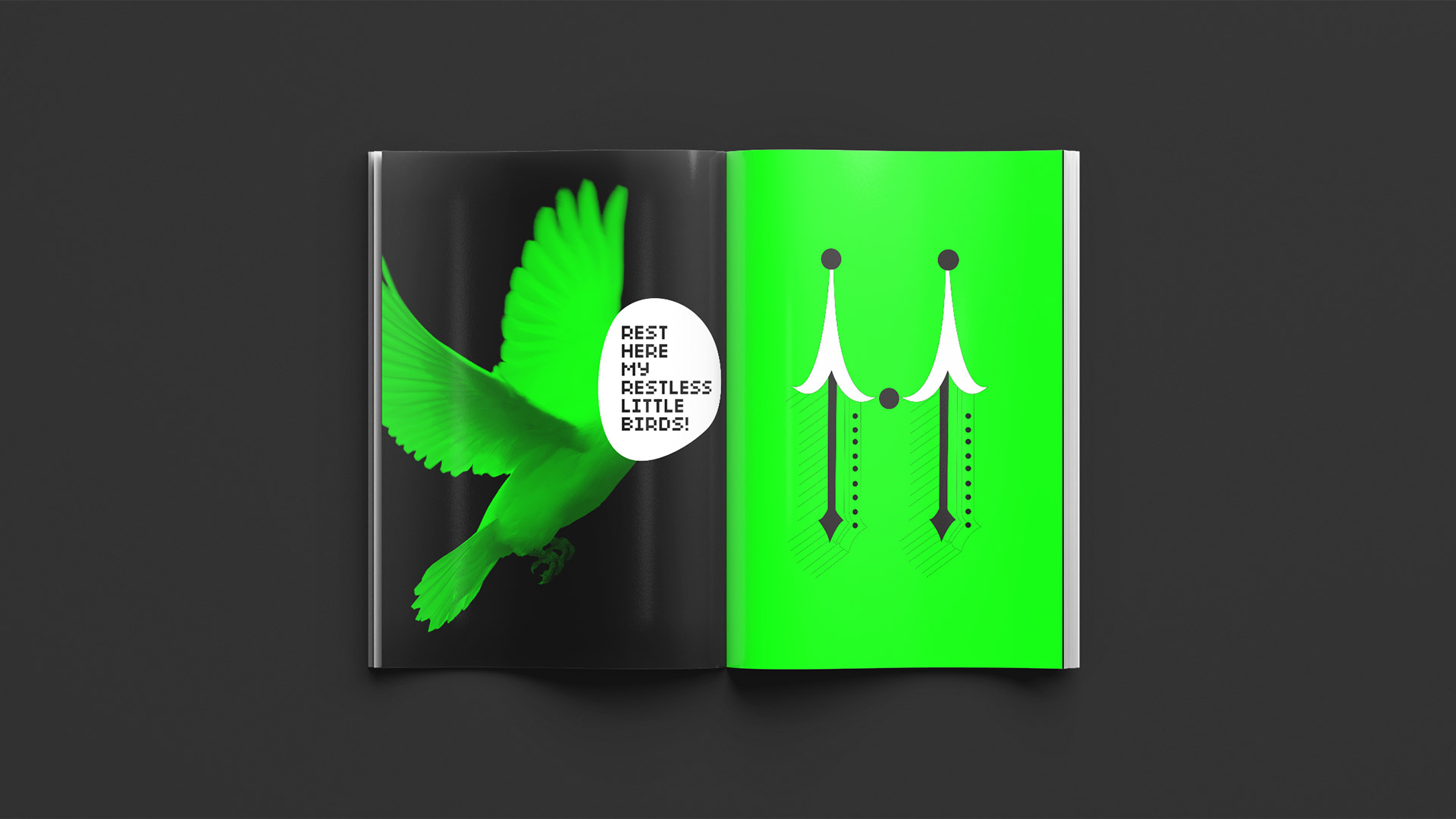 designpark_type_laundry_book